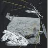 T-Shirt neuf - IKKS - 4 ans (102)